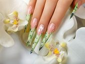 picture of nail-design  - Female hand with manicure and beautiful design on nails - JPG