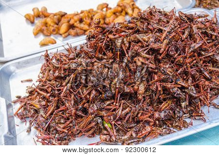 Fired locusts and worms on food market, Bangkok