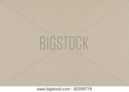 Light Grey Leather Background