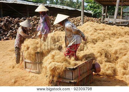 Asian Worker, Coconut, Vietnamese, Coir, Mekong Delta