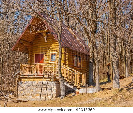 Lodge in the woods