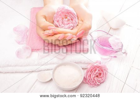 french manicure with essential oils, rose flowers. spa