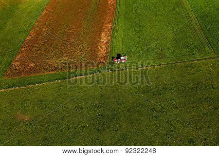 Tractor Mowing Pasture On Big Field Of Neatly Cultivated Land