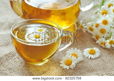 Chamomile tea healthy natural herbal relaxation beverage with camomile flowers and teapot. Vintage s