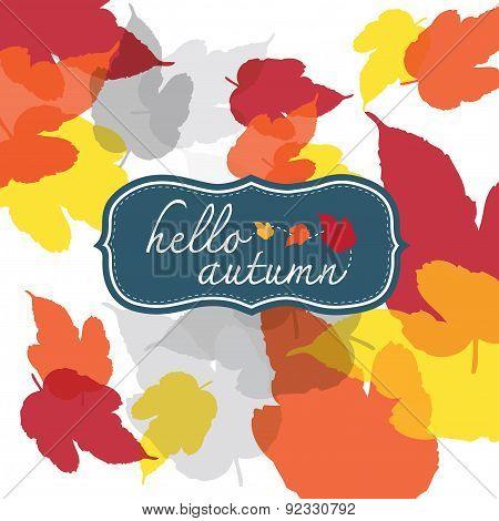 Hello Autumn Square