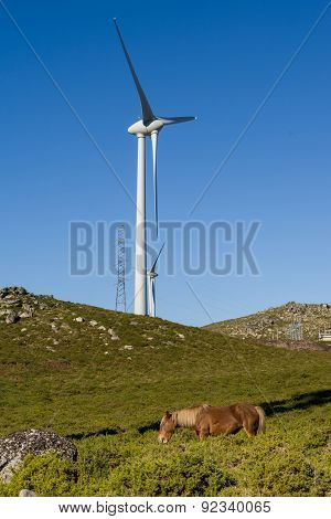 Modern Windmill - Stock Image