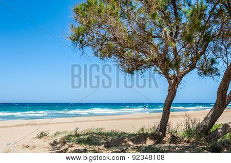 Wild Tropical Beach With White Sand, Turquoise Water And Trees