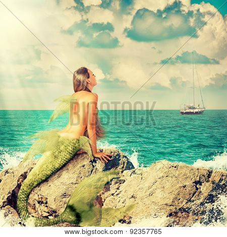 Mermaid Sitting On Rocks