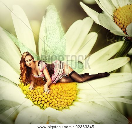 Woman Pixie Lies On A Daisy Flower