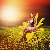 picture of pixie  - Beautiful sexy woman pixie sitting on a yellow flower at summer - JPG