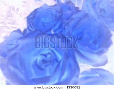 Inverted Roses
