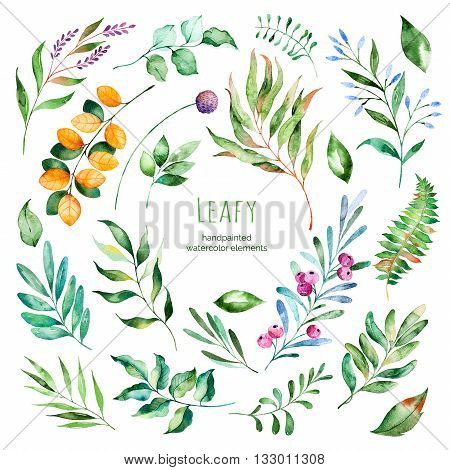 Leafy collection, 22 Handpainted watercolor floral elements.