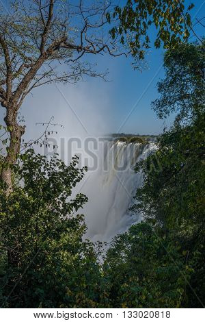 Glimpse Of Victoria Falls Framed By Trees