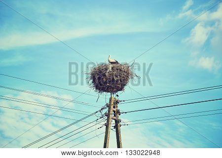 Retro toned stork nest on a power line pole.