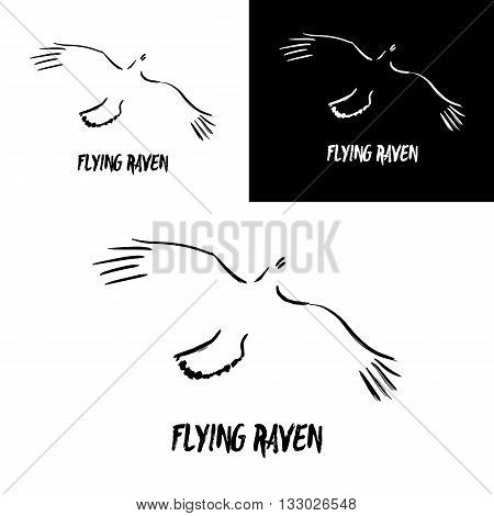 Grunge flying raven logo template. Vector illustration isolated on white. Artistic gesture painting. Black and white crow