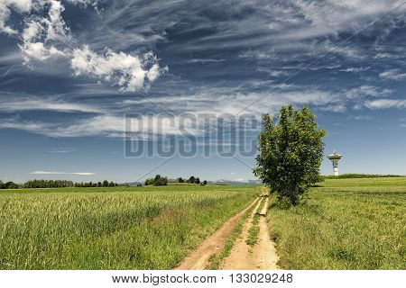 Country landscape in Brianza (Lombardy Italy) near Tregasio at spring. Path