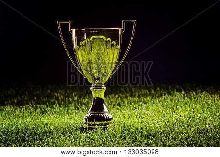 Shiny Metal Cup - First Prize
