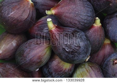 the blacks figs just picked from the tree
