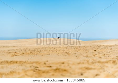 Yellow Sand And Blue Sea And Sky