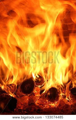 some wood logs that burn with high yellow flames