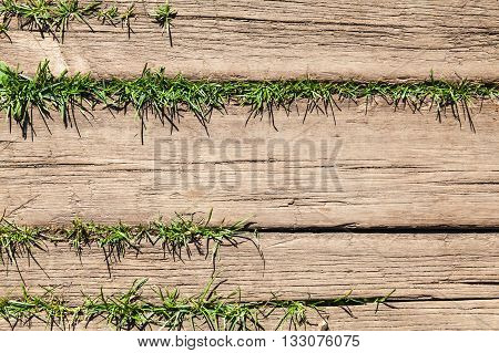 Brown Wooden Floor With Green Grass