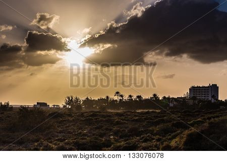Amazing Sunset With Palm Trees Silhouettes- Morro Jable Fuerteventura Canary Islands Spain