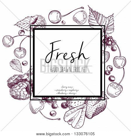 Vector set of berry mix. Strawberry raspberry blueberry cherry. Hand drawn color set of summer fresh fruits with sqaure border text template.