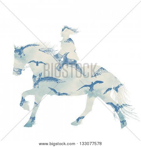 A horse rider woman silhouette with sky full of seagulls, vector illustration