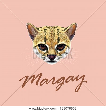 Vector Illustrated Portrait of Margay cat. Cute face of wild cat on blue background.