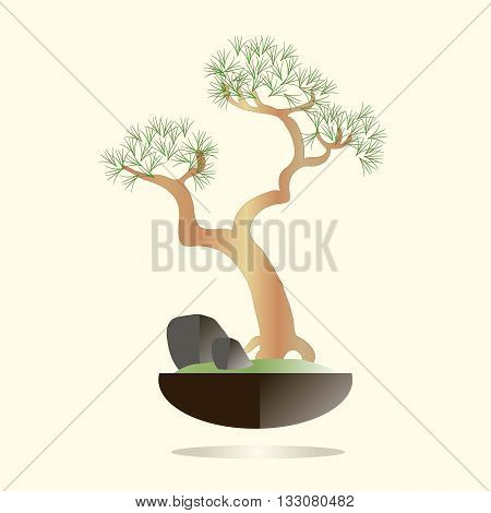 Bonsai. Pine tree in a black pot on a light pink background. Green needles, brown branches, gray stones, green grass, flat design. Vector object isolated
