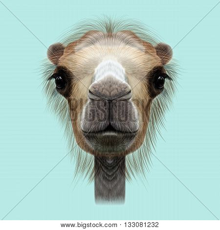 Illustrated Portrait of Camel. Cute face of Camel on blue background.