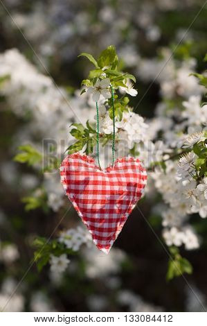 Valentine heart hanging on a tree branch