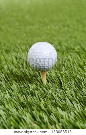 closeup golf ball on wood tee on artificial grass