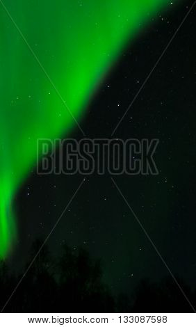 An aurora drops line a curtain across the upper sky.