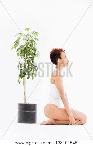 Profile of pacified african american young woman near small tree in pot over white background