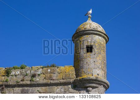 Watchtower Of The Fortress In Viana Do Castelo