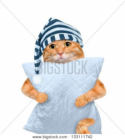 Sleepy cat in a cap with a pillow.  Isolated on white.