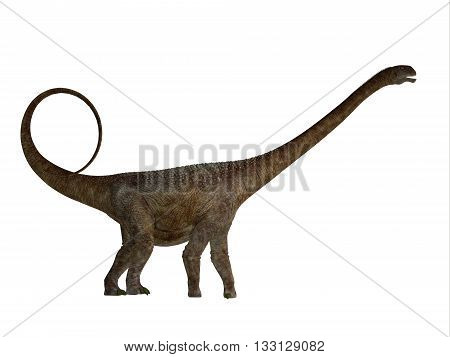 Malawisaurus Side Profile - Malawisaurus was a herbivore sauropod dinosaur that lived in Africa during the Cretaceous Period. 3D illustration