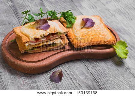 Italian Hot Crispy Toasted Panini Sandwiches