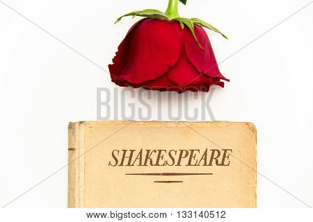 Old book by Shakespeare and red rose sit on white background