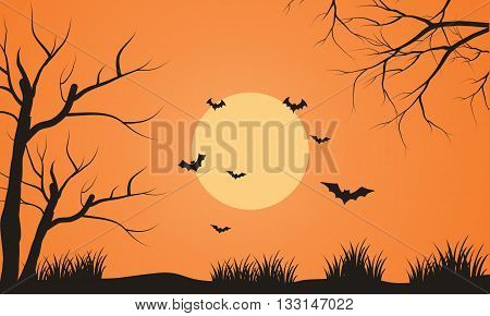 At afternoon bat flying scenery silhouette with orange backgrounds