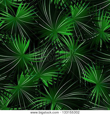 Tropical cabbage palm in a seamless pattern .