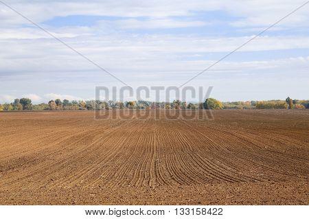 Agricultural field plowed brown soil