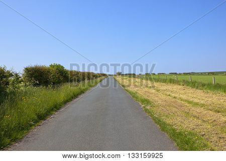 Small Rural Road In Summer