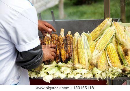 Roasted Corn In Istanbul