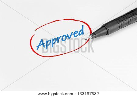 Approved Text - Business Concept