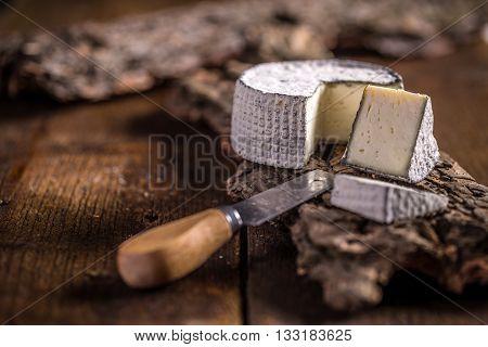 Cheese Of Camembert
