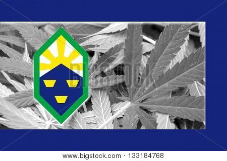 Flag Of Colorado Springs, Colorado, On Cannabis Background