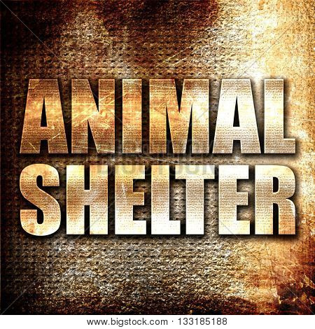 animal shelter, 3D rendering, metal text on rust background