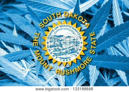 Flag Of South Dakota State, On Cannabis Background